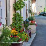 hameau fleuri Corbaz0861