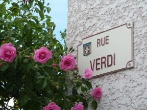 Panneau Rue verdi 1050207-1